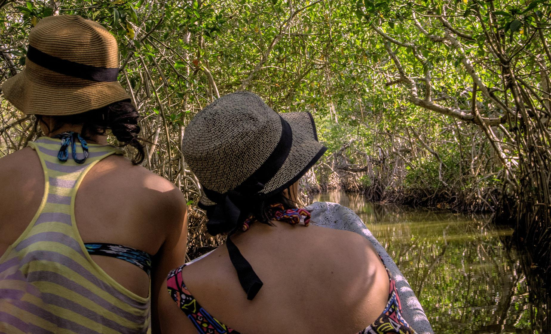 Mangroves Tour in Cartagena (La Boquilla, Las Bovedas)
