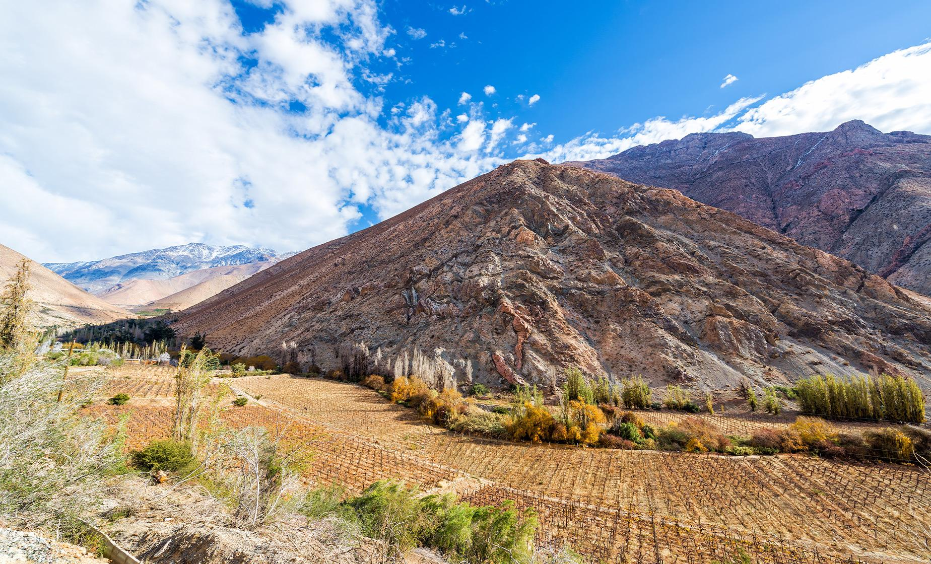 Private Elqui Valley Tour