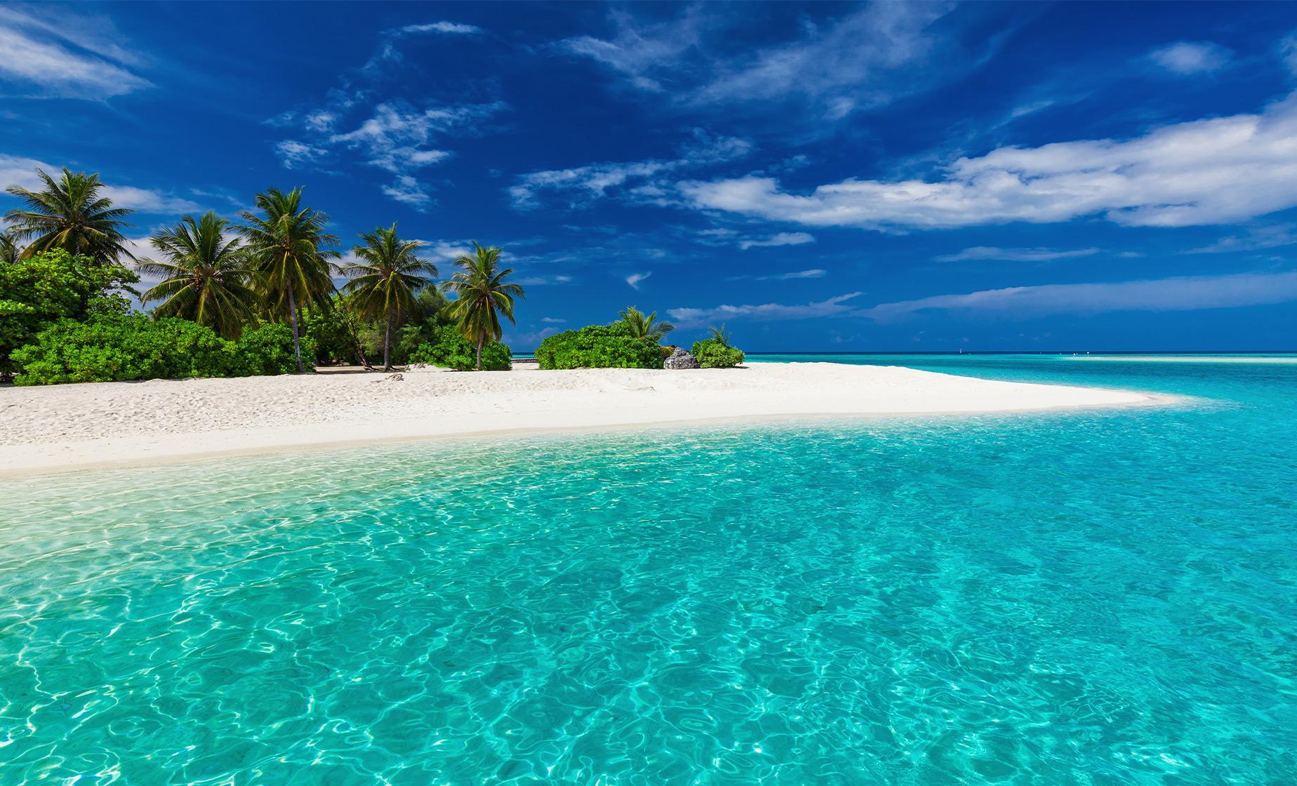 Fiji Beach Break