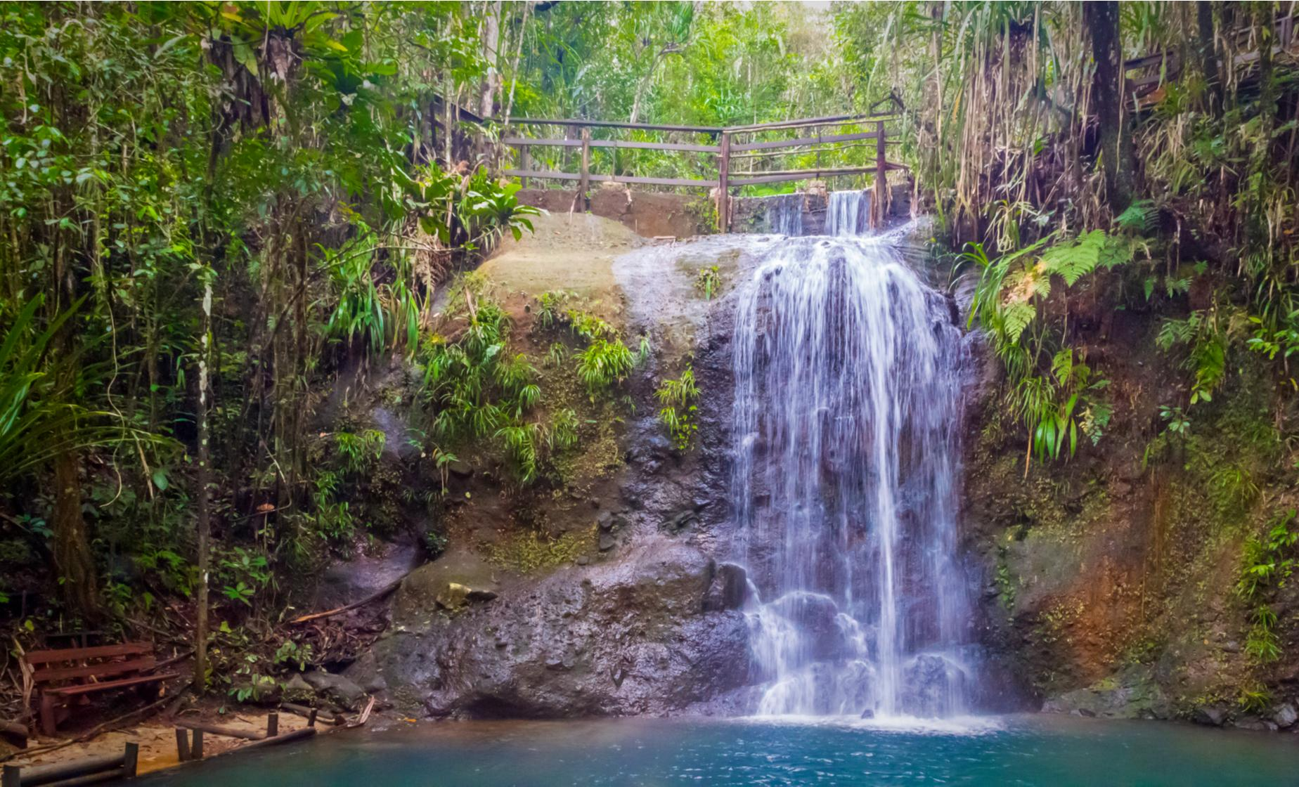 Private Jungle and Waterfall Trek